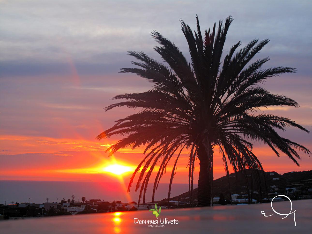 Il tramonto visto dai nostri dammusi Uliveto
